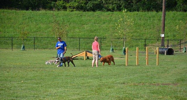 Waggin Trail Dog Park 5.jpg