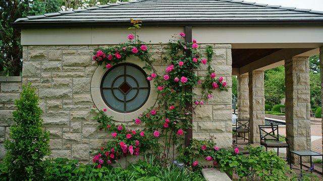 Kauffman Memorial Garden 5.jpg