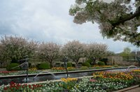 Kauffman Memorial Garden 4.jpg