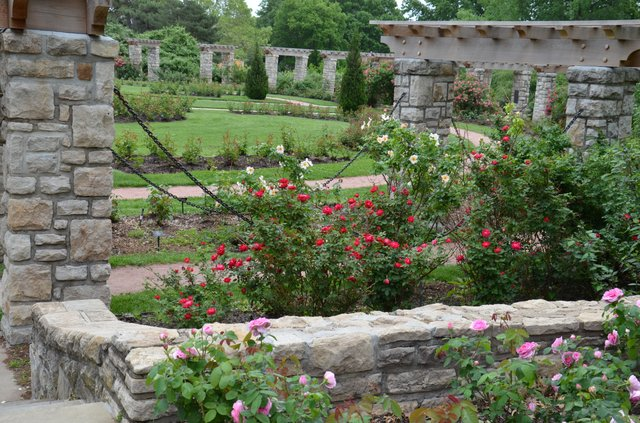 Loose Park Rose Garden 4.jpg