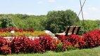 Overland ParkArboretum & Botanical Gardens 3.jpg