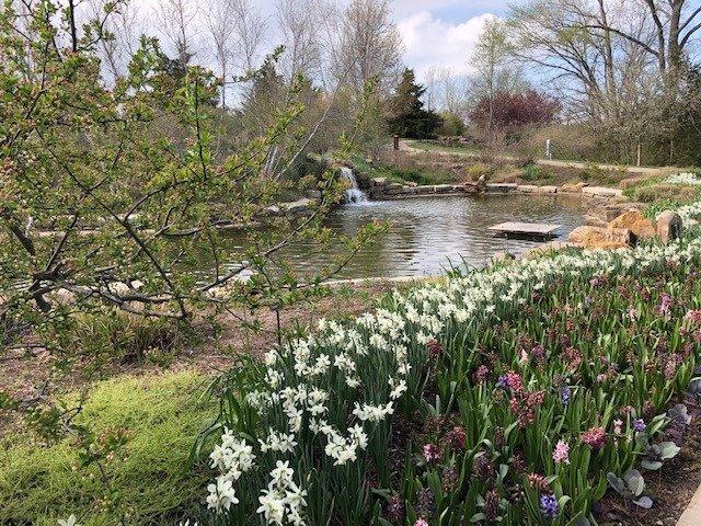 Overland ParkArboretum & Botanical Gardens 5.jpg