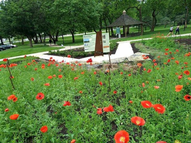 West Flanders Park 4.jpg