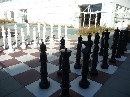 chesscentrallibr.jpg.jpe