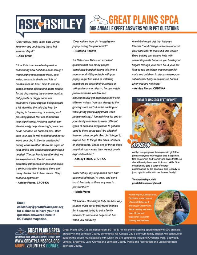 SPCA Ad_KCP0820.jpg