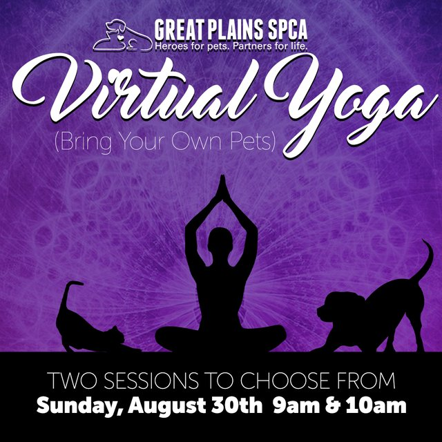 virtual-yoga-social.png