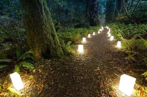 luminarywalkblueriver.jpg