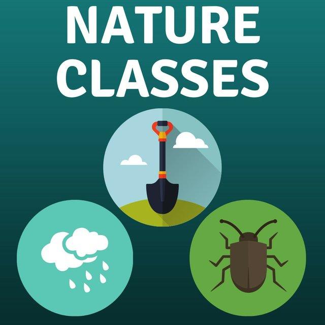 thumbnail_nature classes.jpg