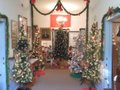 Antique Christmas Trees.JPG