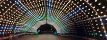 Winter Magic - no logo - Longest animated light tunnel in the Midwest.jpg