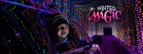 Winter Magic - Boy watches Christmas lights Covid-free.jpg
