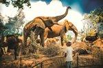 Wonders of Wildlife - Great African Hall - a.jpg