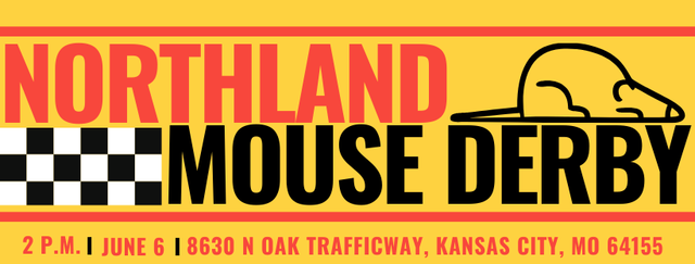 Northland Mouse Derby Banner.png