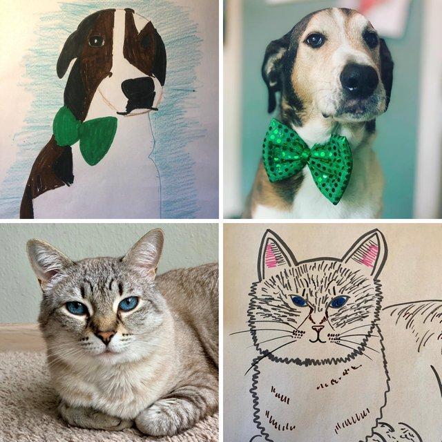 Bad Pet Drawing 21.png