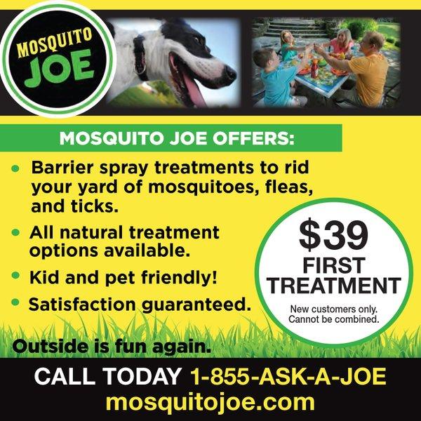 Mosiquito Joe_KCP0521.jpg