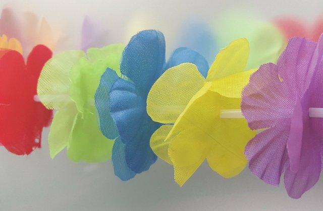 lei-flowers-1177410_1920.jpg