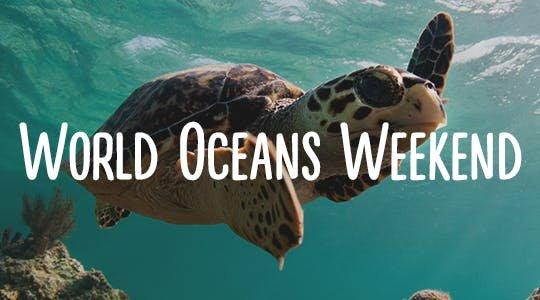 worldoceansday.jpg