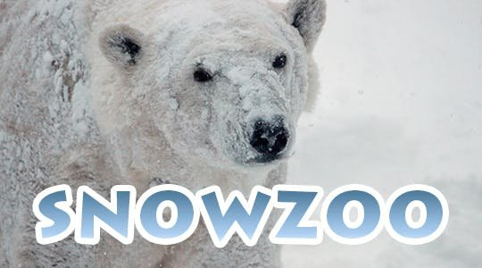 snowzoo.jpg