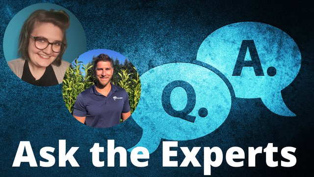 Copy of Ask the Experts (2).png