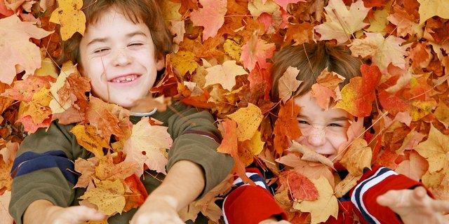 Boys in fall leaves.jpeg
