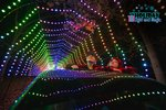HLM FB Profile Pic Holiday Light and Magic Winter Christmas Family KC Wine In The Park To Do.jpg