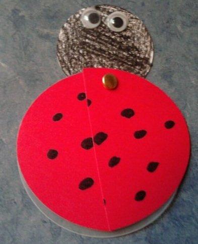 LadybugValentine1.jpg.jpe