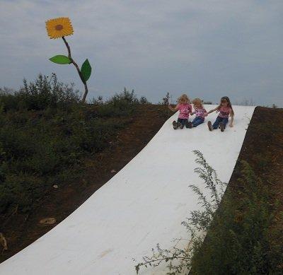 sunflowerslide.jpg.jpe