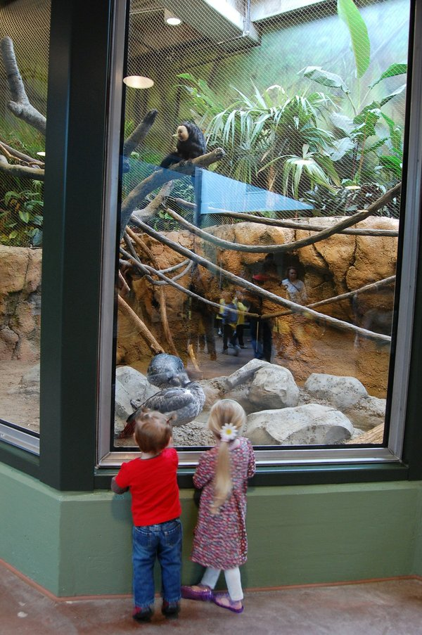 Zoo-and-Final-Touch-022.jpg.jpe