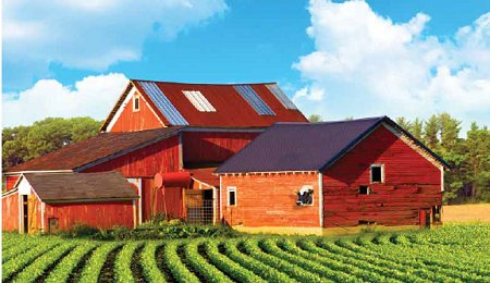 farmtotable.png