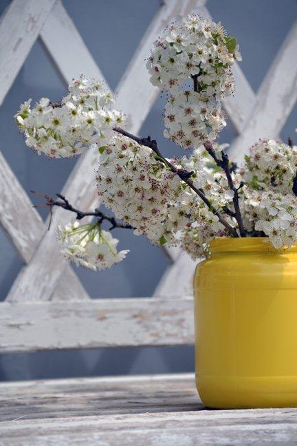 flowersyellowjar.jpg.jpe