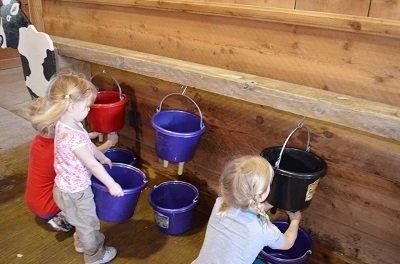 milking.jpg.jpe