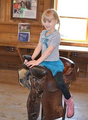 saddle.jpg.jpe