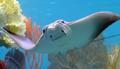 sealife.png