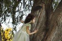 fairyhousespowellgardens.jpg.jpe