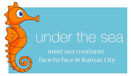 undersea.png