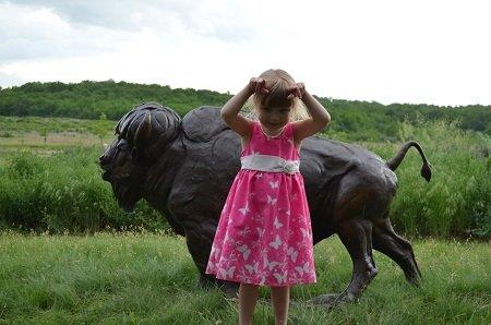 bison(1).jpg.jpe
