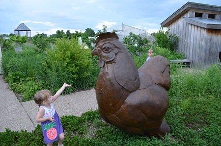 chicken1.jpg.jpe