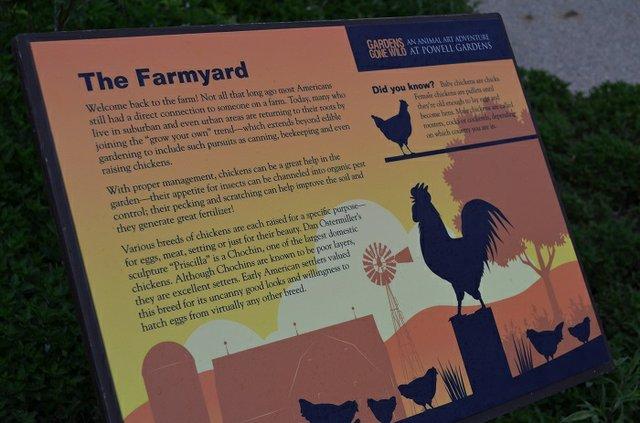 farmyard(1).jpg.jpe