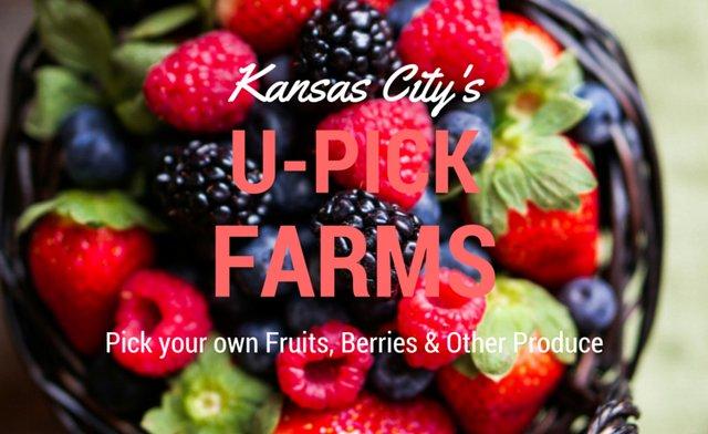 kcupickberries.png