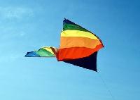 kite-3.png