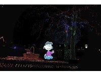 SnoopysHotSummerLights.jpg.jpe