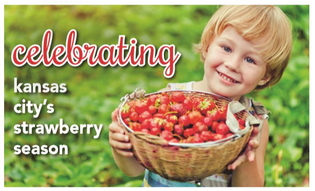 strawberryseason.png
