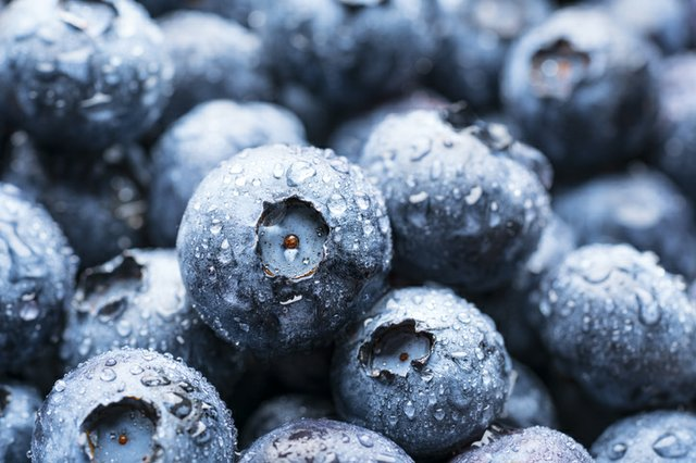 blueberry.jpg.jpe