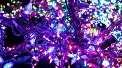 magic_tree_ls-051adbf5.jpeg.jpe