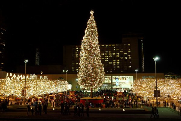 crown_center_mayors_tree.jpg.jpe